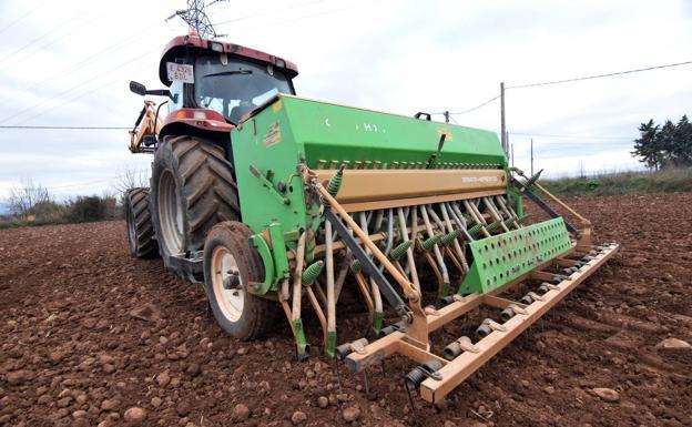 La agricultura es uno de los sectores en los que ha descendido el desempleo  Miguel Herreros