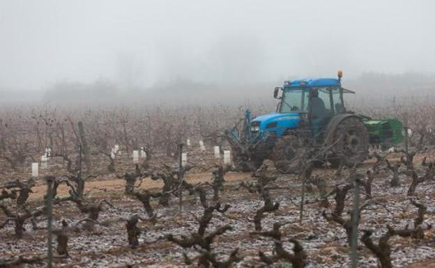 c0c0bef5c4532 Un tractor en plena faena en una explotación agrícola de la localidad de  Uruñuela.